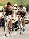 Stephen Roche en Pedro Delgado
